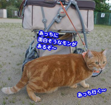 yuugu9398.jpg