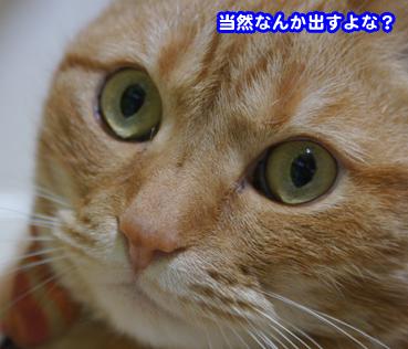 me5444.jpg