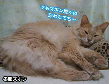 natufuku0288.jpg