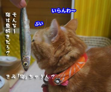 iwasi4676.jpg