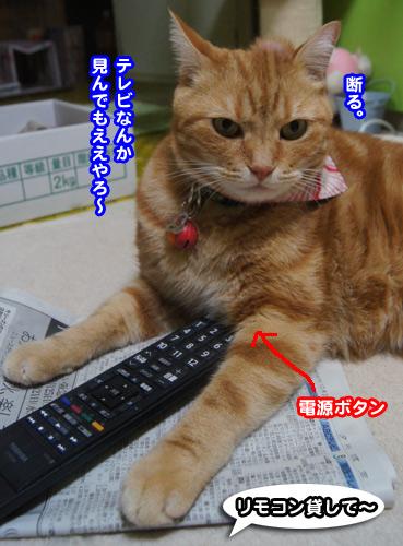 TV5699.jpg