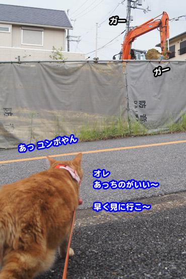 gakou4625.jpg