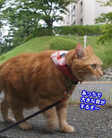 gakou4622.jpg
