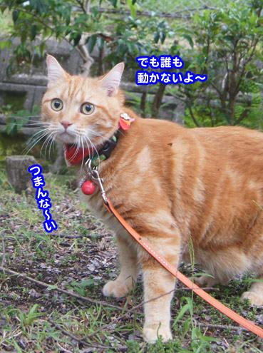 gakou4605.jpg