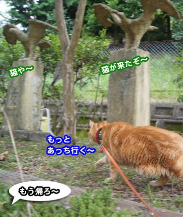 gakou4607.jpg