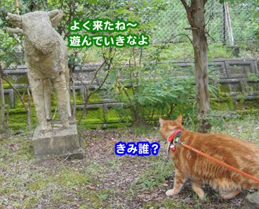 gakou4592.jpg