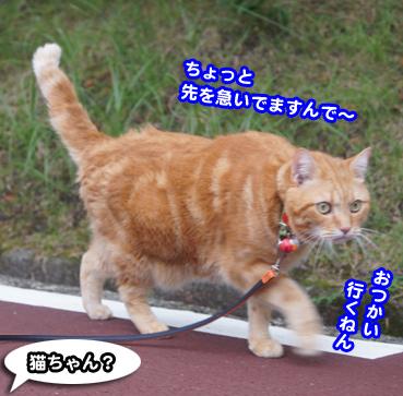 gakou4584.jpg