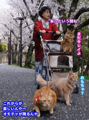fubuki1344.jpg