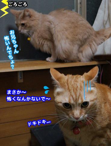 kaminari4758.jpg