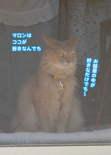 kowai8056.jpg