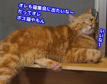 syukai00264.jpg