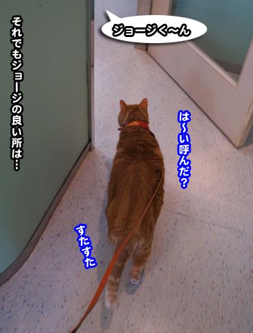chiku1219.jpg
