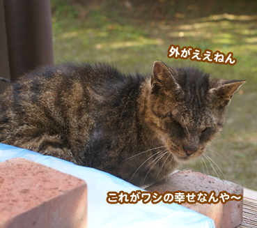 fuuta0382.jpg