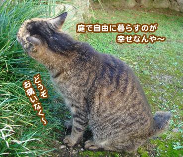 fuuta2265.jpg