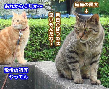 fuuta1246.jpg