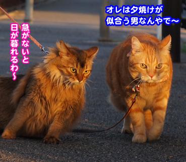 yuu6805.jpg