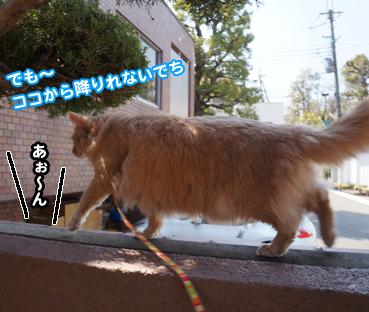 fuku5207.jpg
