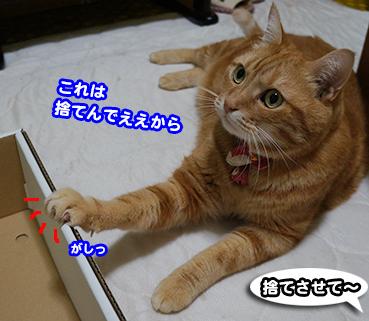 hako2268.jpg