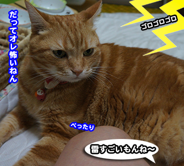 goro2150.jpg
