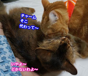 goro2138.jpg