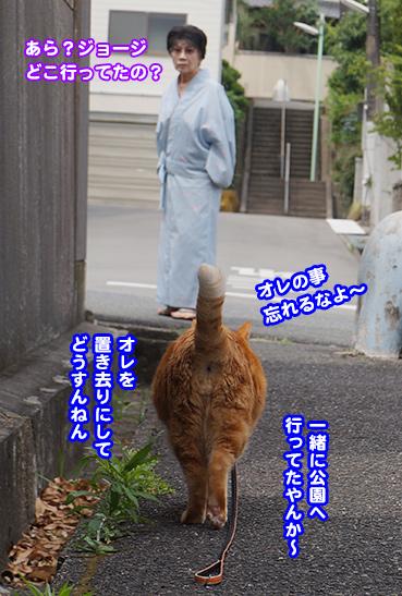 baba9979.jpg