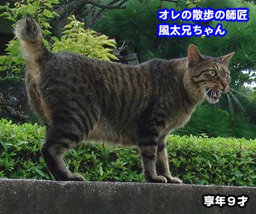 1220_1.jpg