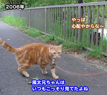 1254_1.jpg