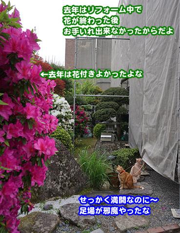 2179_1.jpg