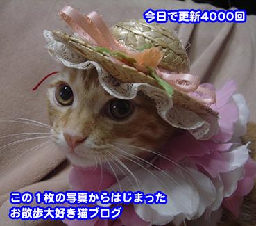 2207_1.jpg
