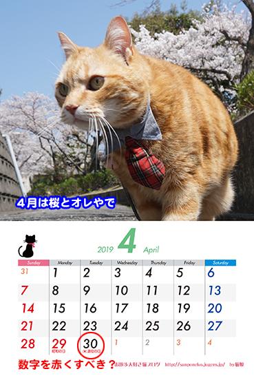 04_2.jpg