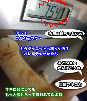 0012_1.jpg