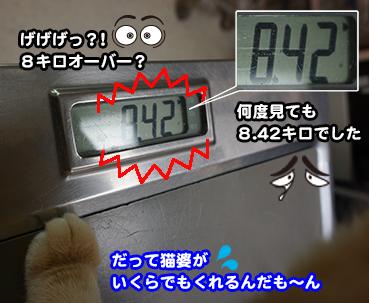 7192_1.jpg