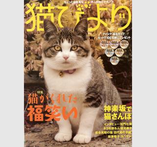 猫びより 11月号