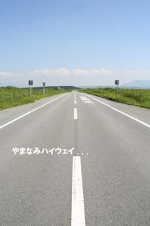 IMG_8856.jpg