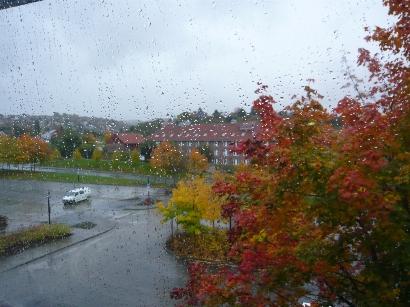 雨のキャンパス