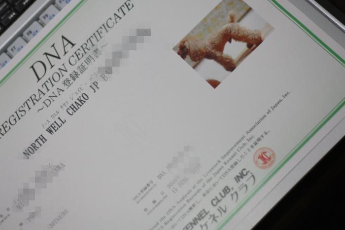 IMG_4078編集完了.jpg