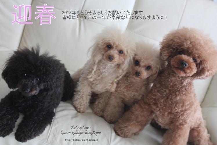 ブログ用新年あいさつ.jpg