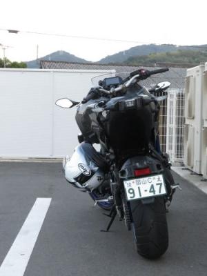 IMG_9873s.JPG