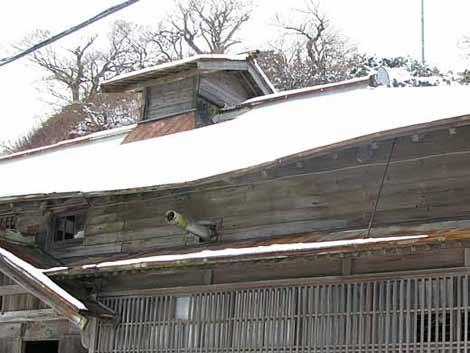 茨木家中出張番屋正面大屋根破損部分