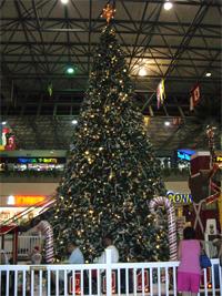 Chree Tree