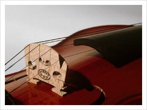 池袋 バイオリン レッスン
