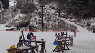 365スキー場