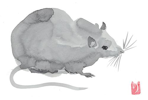 ネズミの絵