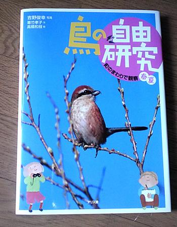 自由研究で鳥はなぜ飛べるのかというテーマでやろ …