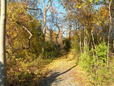 South Garden Trail