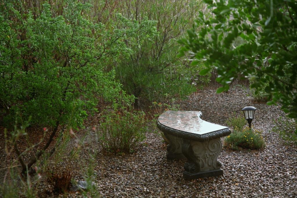 雨が激しく降る庭