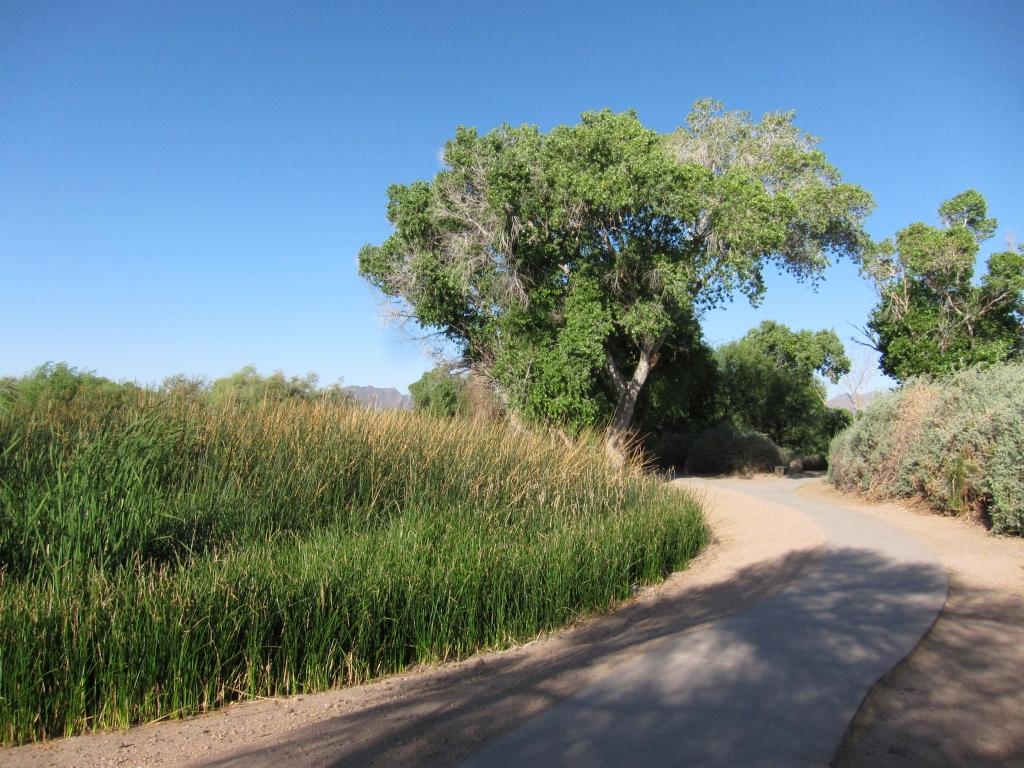 風景トレール