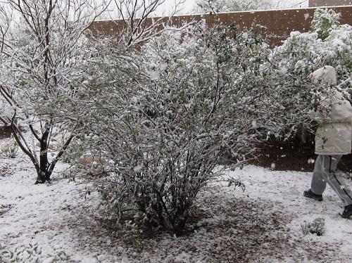 雪搔きする留見子
