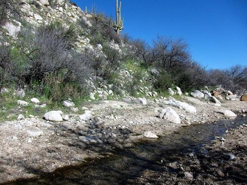 風景 水の流れ