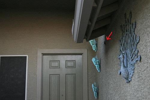 ノドグロハチドリ玄関の壁